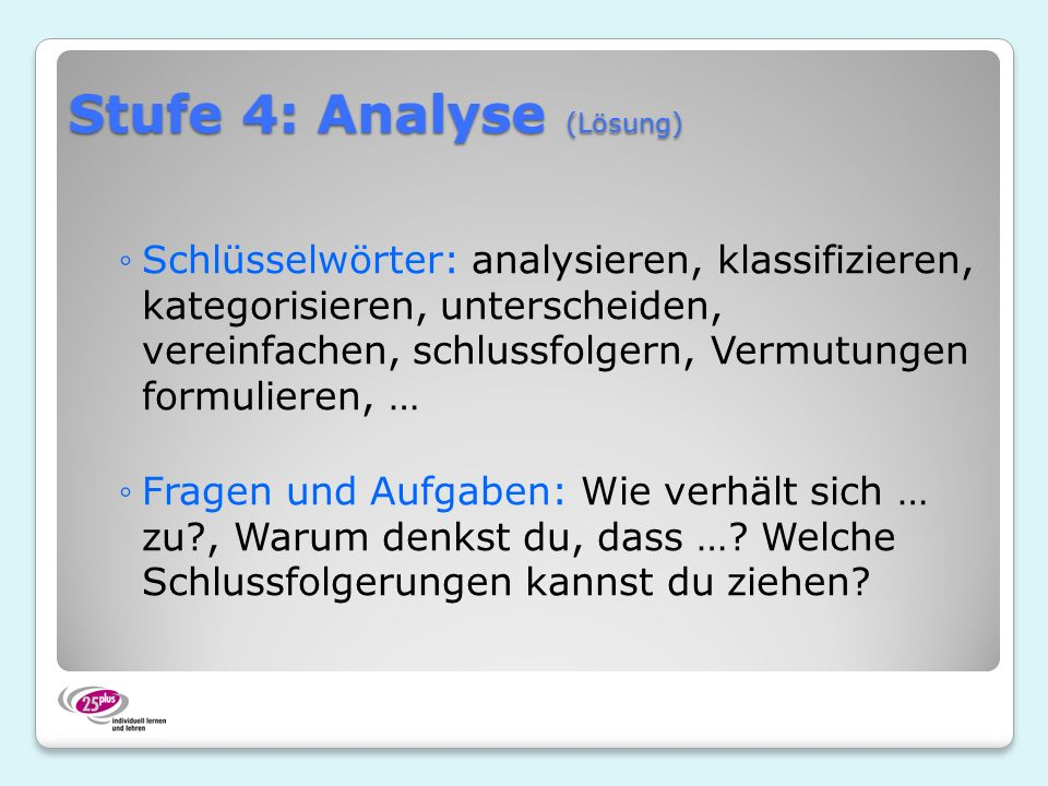 Stufe 4: Analyse (Lösung)