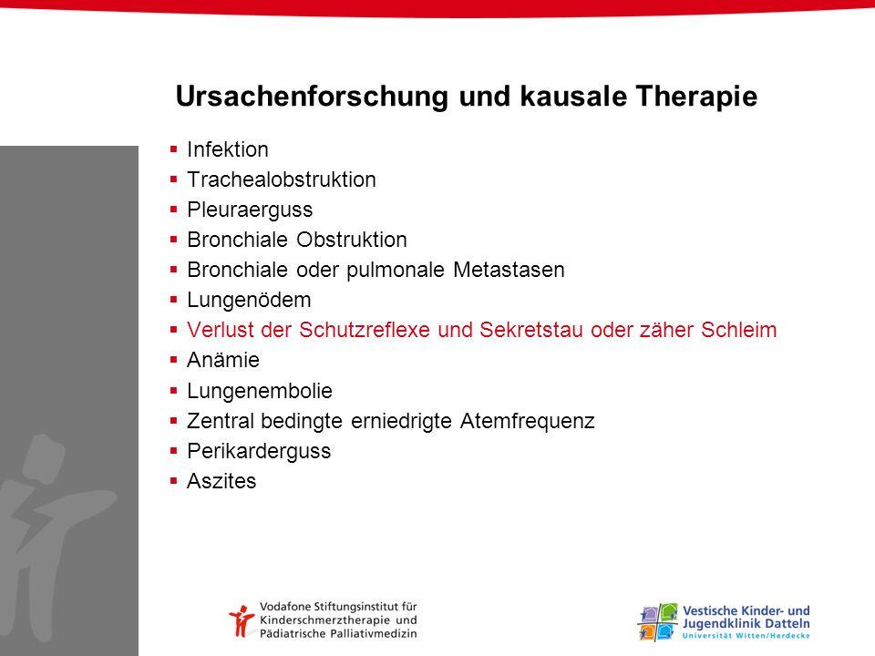 Ursachenforschung und kausale Therapie