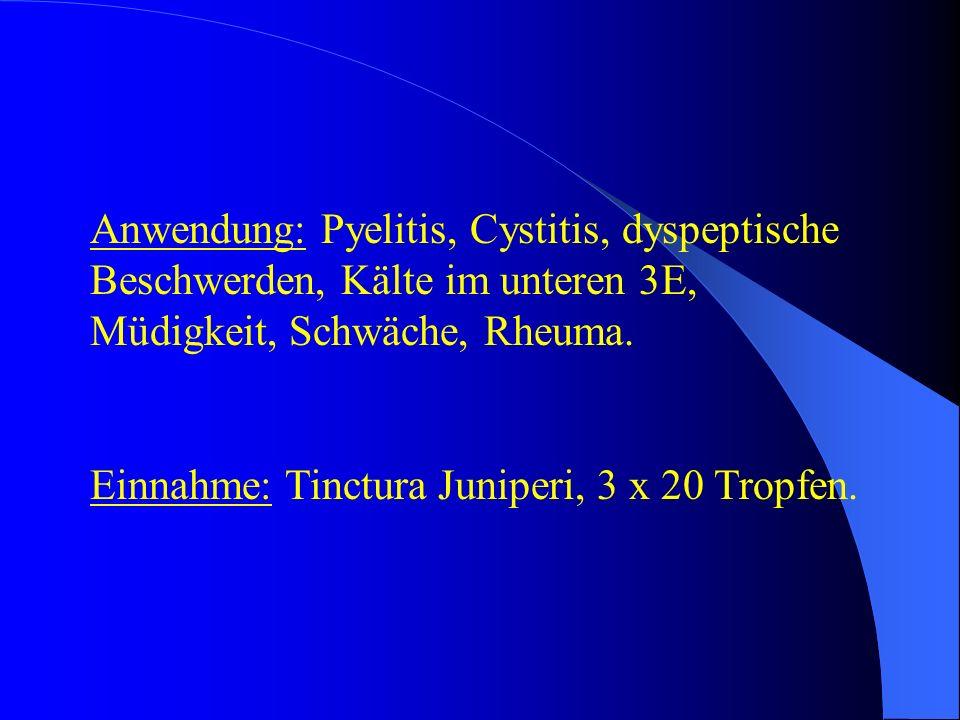 Anwendung: Pyelitis, Cystitis, dyspeptische Beschwerden, Kälte im unteren 3E, Müdigkeit, Schwäche, Rheuma.