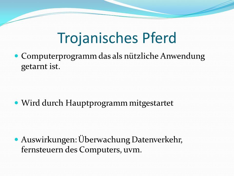 Trojanisches Pferd Computerprogramm das als nützliche Anwendung getarnt ist. Wird durch Hauptprogramm mitgestartet.