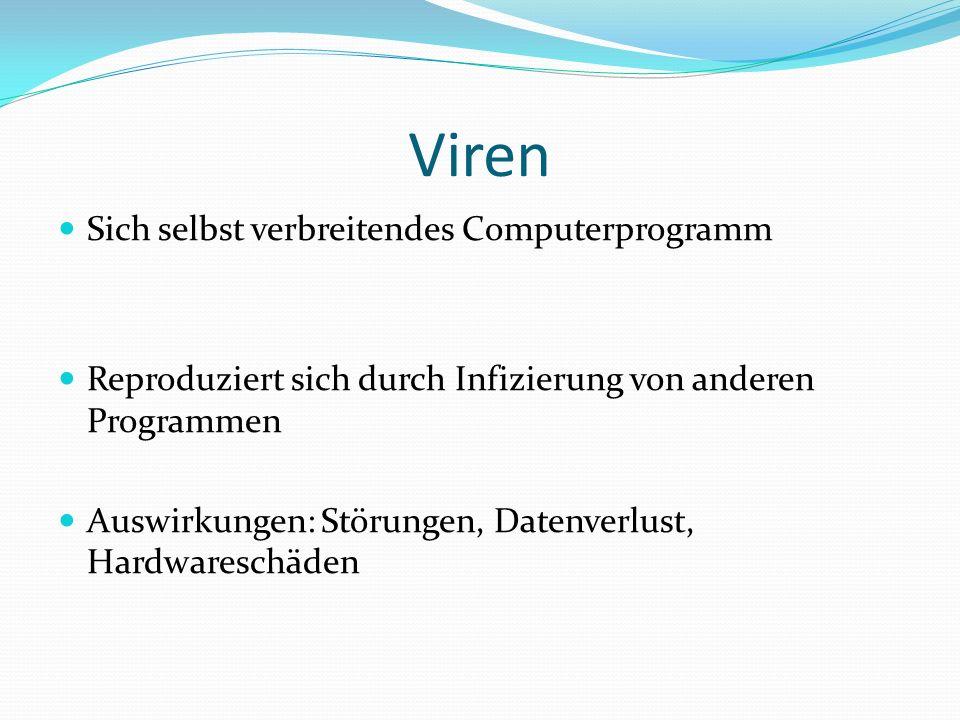 Viren Sich selbst verbreitendes Computerprogramm