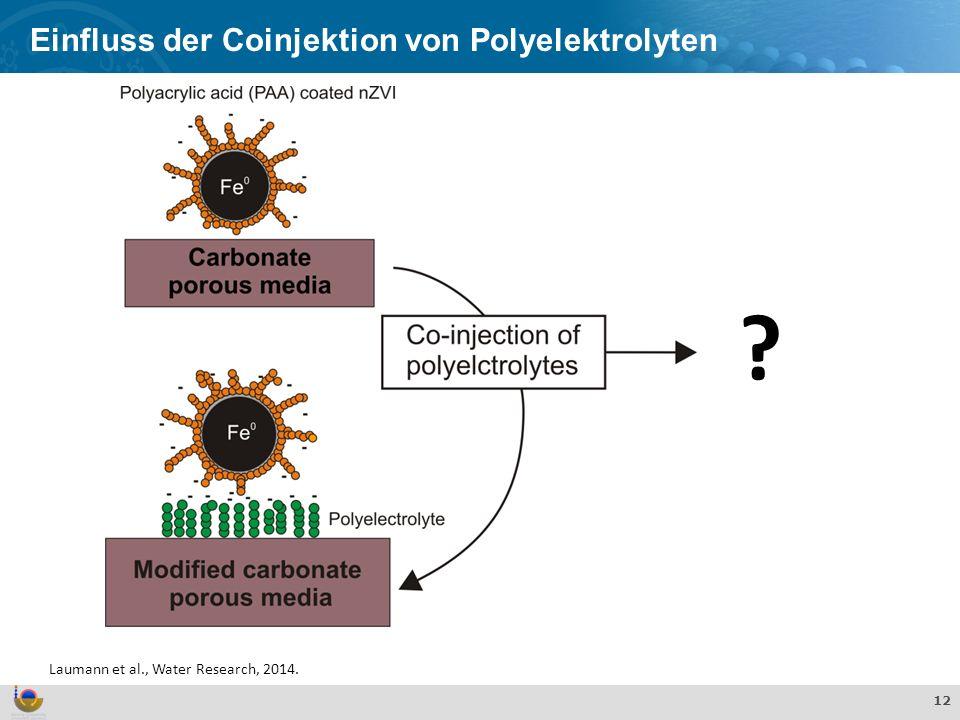 Einfluss der Coinjektion von Polyelektrolyten