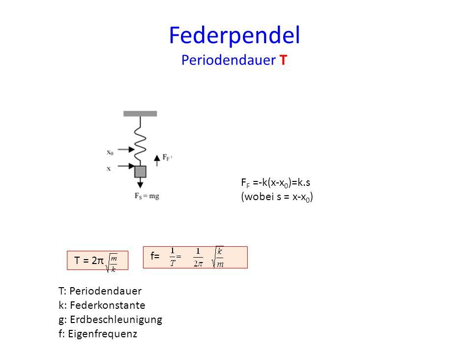 Federpendel Periodendauer T