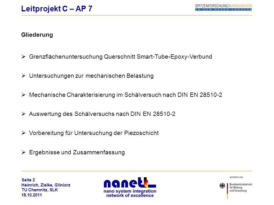 Leitprojekt C – AP 7 Gliederung