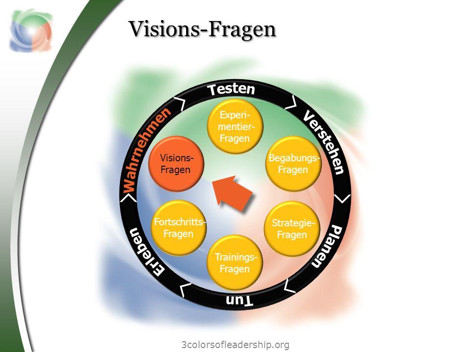 Visions-Fragen Testen Wahrnehmen Verstehen Erleben Planen Tun Experi-