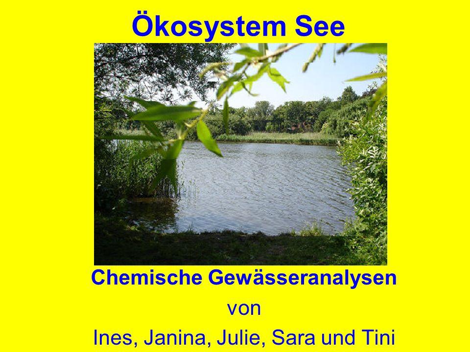Chemische Gewässeranalysen von Ines, Janina, Julie, Sara und Tini