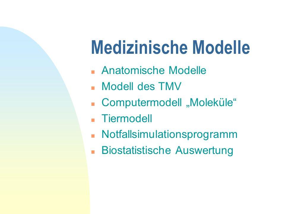 Medizinische Modelle Anatomische Modelle Modell des TMV