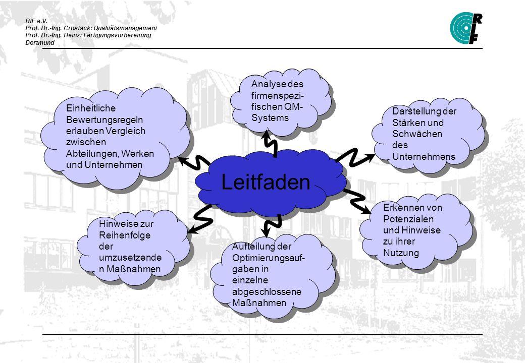 Leitfaden Analyse des firmenspezi-fischen QM-Systems