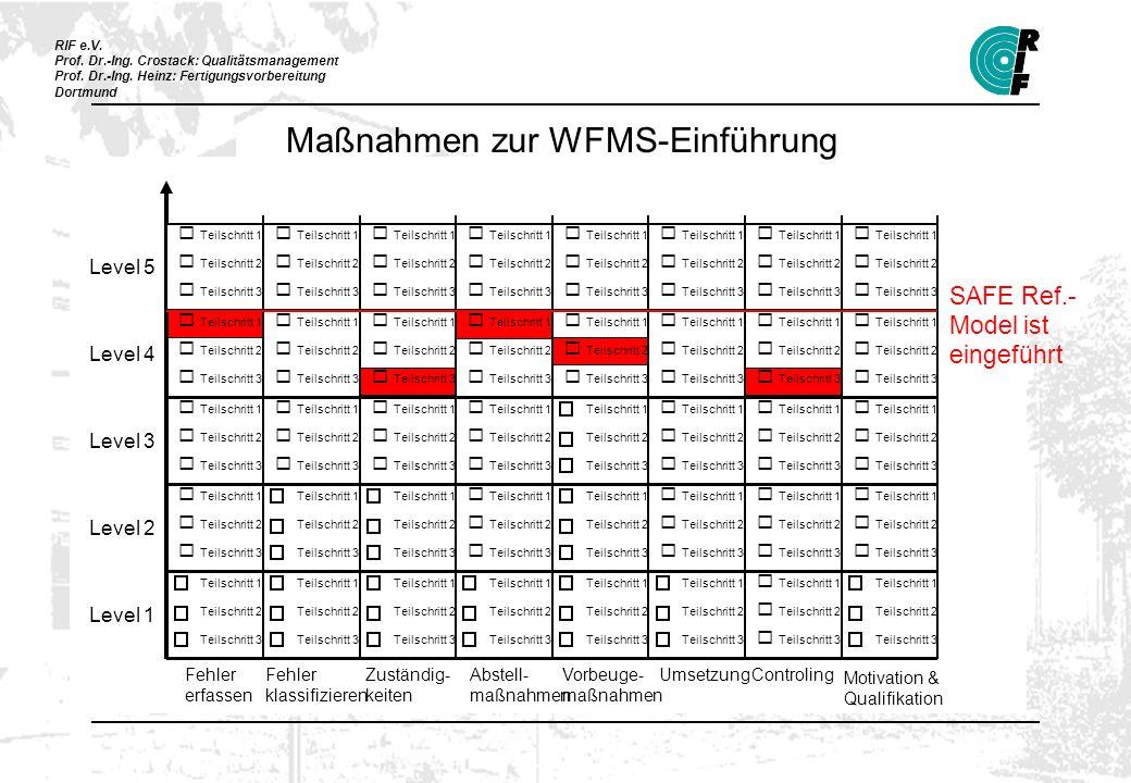 Maßnahmen zur WFMS-Einführung