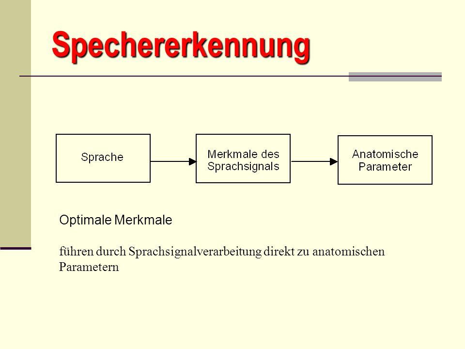 Spechererkennung Optimale Merkmale