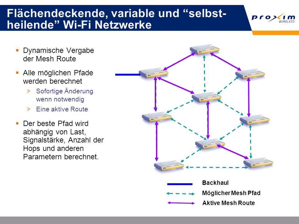 Flächendeckende, variable und selbst-heilende Wi-Fi Netzwerke