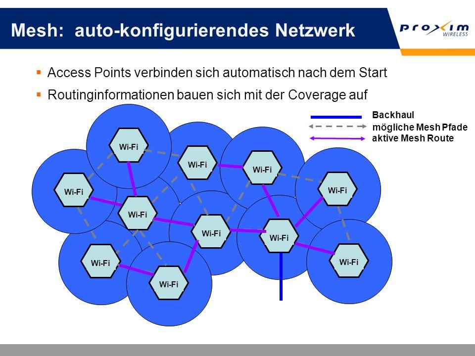 Mesh: auto-konfigurierendes Netzwerk