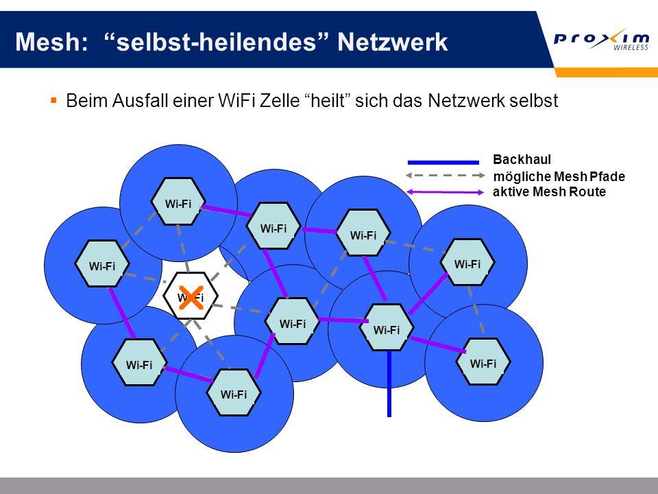 Mesh: selbst-heilendes Netzwerk