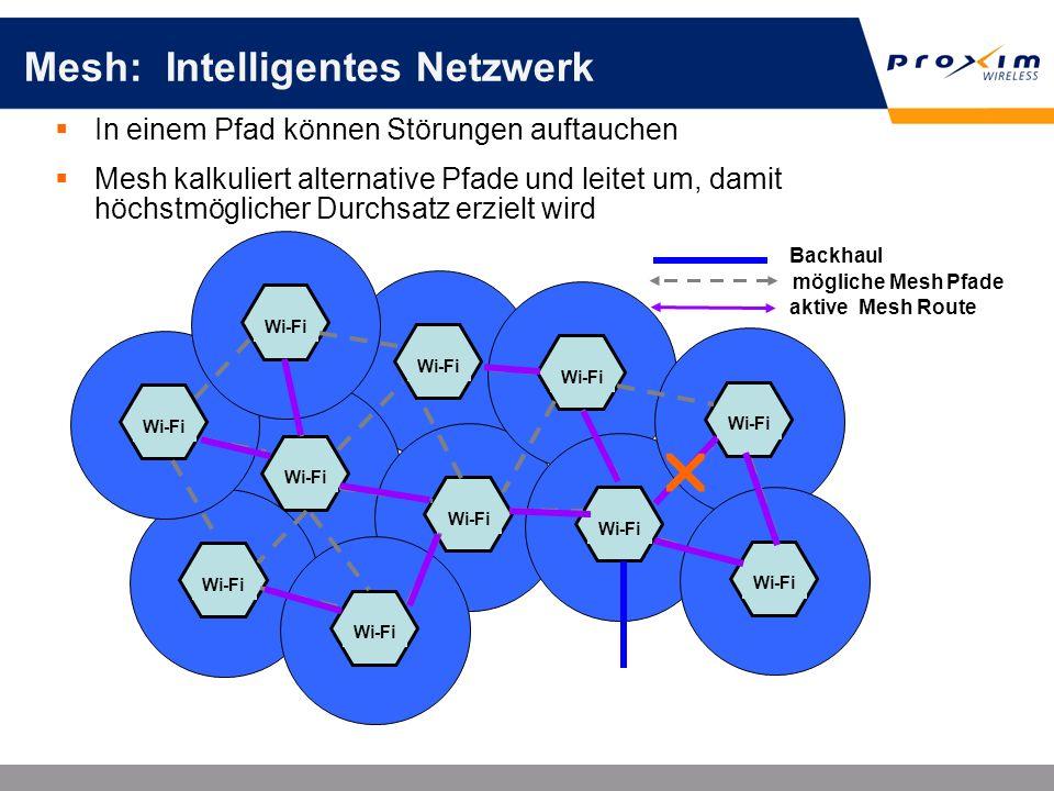 Mesh: Intelligentes Netzwerk