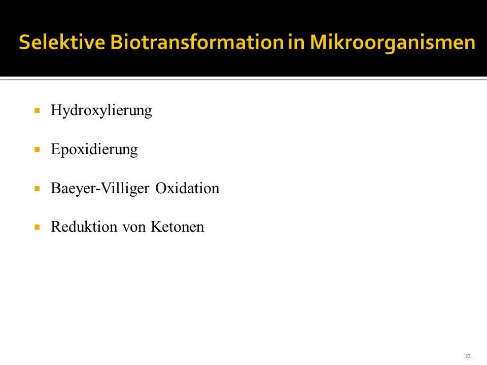 Selektive Biotransformation in Mikroorganismen