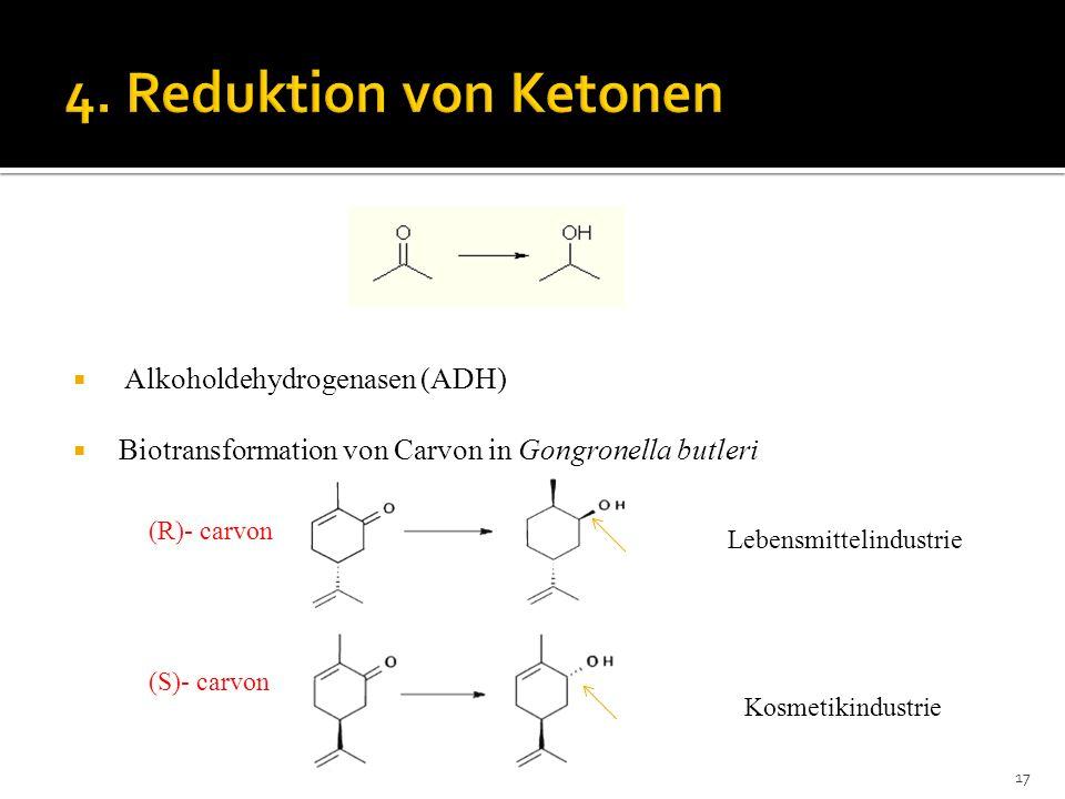 4. Reduktion von Ketonen Alkoholdehydrogenasen (ADH)