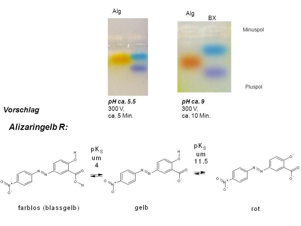 Alizaringelb R: Vorschlag Alg Alg BX pH ca. 5.5 300 V, ca. 5 Min.