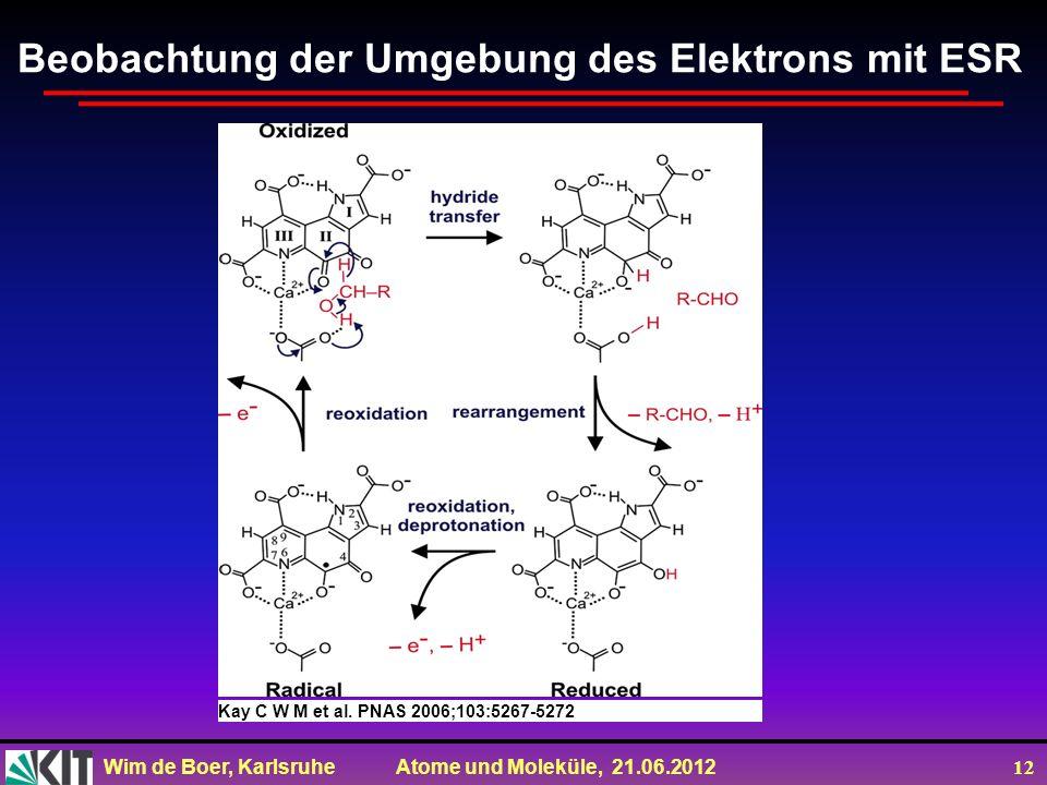 Beobachtung der Umgebung des Elektrons mit ESR