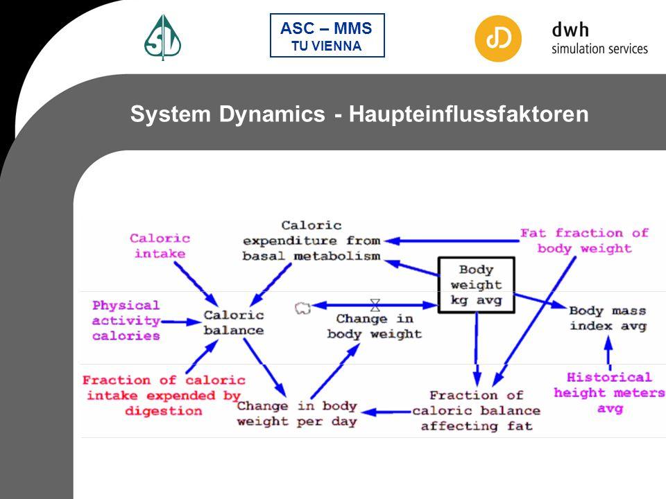 System Dynamics - Haupteinflussfaktoren