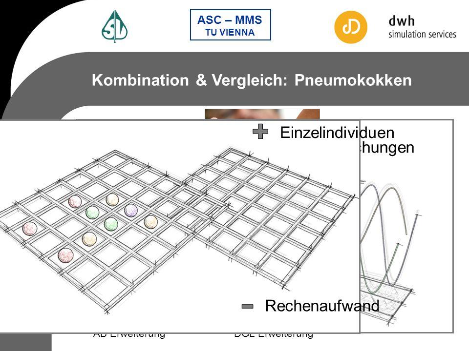 + + - - Kombination & Vergleich: Pneumokokken Einzelindividuen