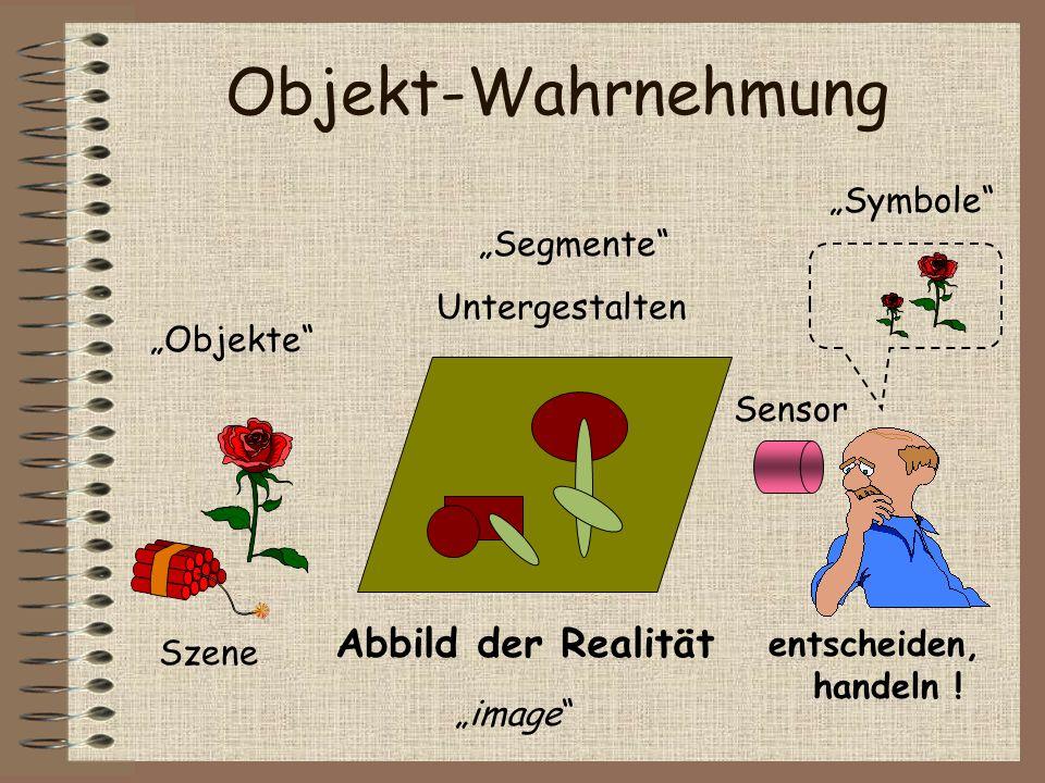 """Objekt-Wahrnehmung Abbild der Realität """"Symbole """"Segmente"""