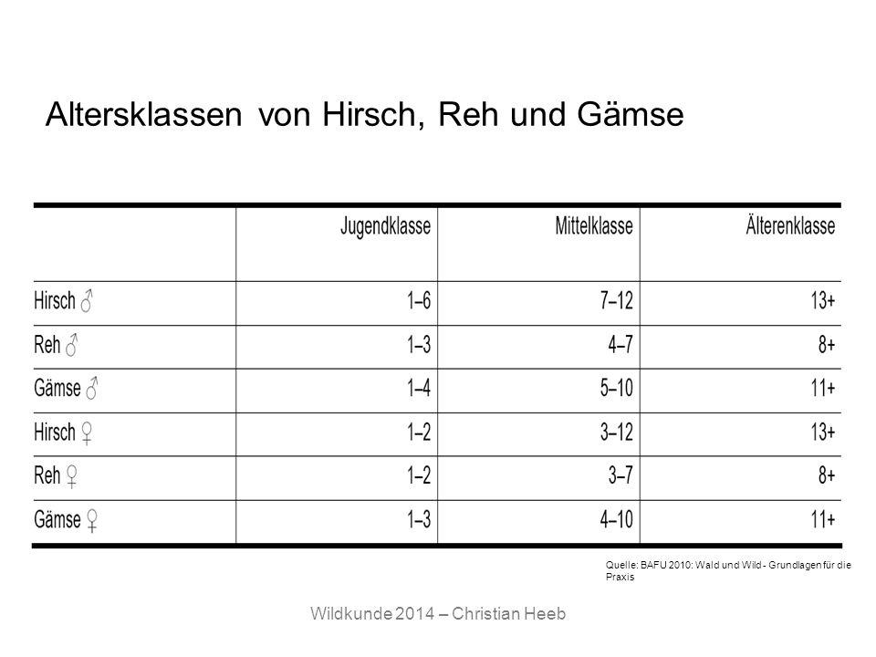 Altersklassen von Hirsch, Reh und Gämse