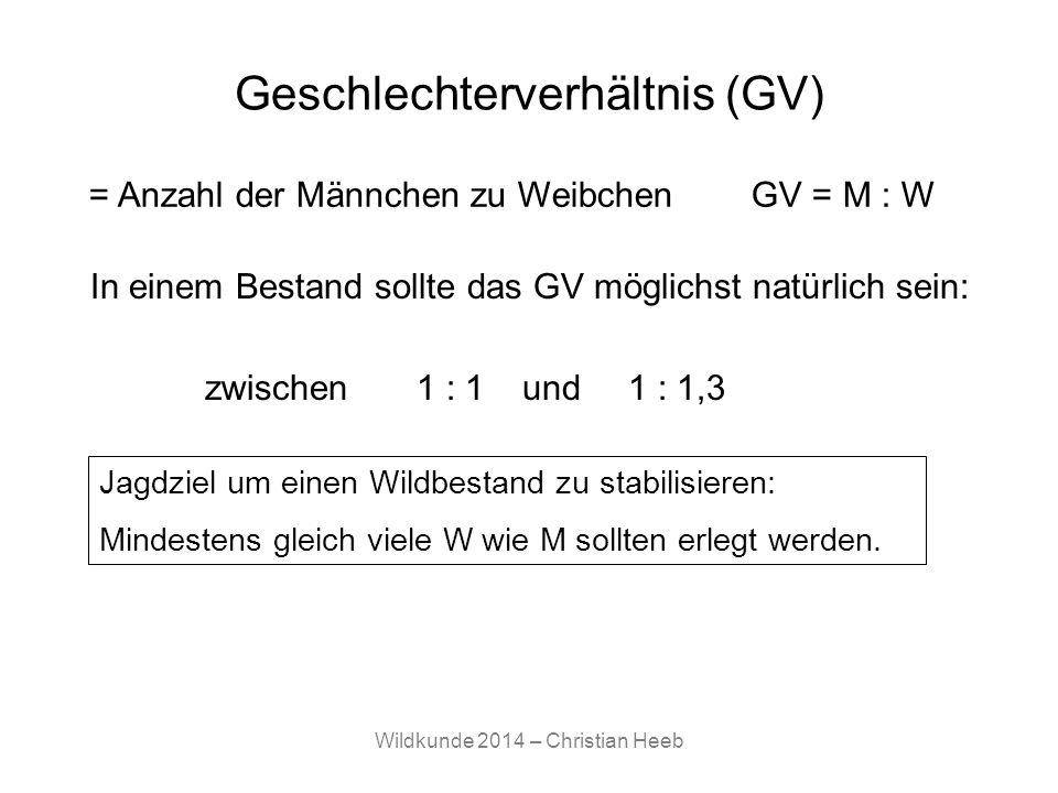 Geschlechterverhältnis (GV)