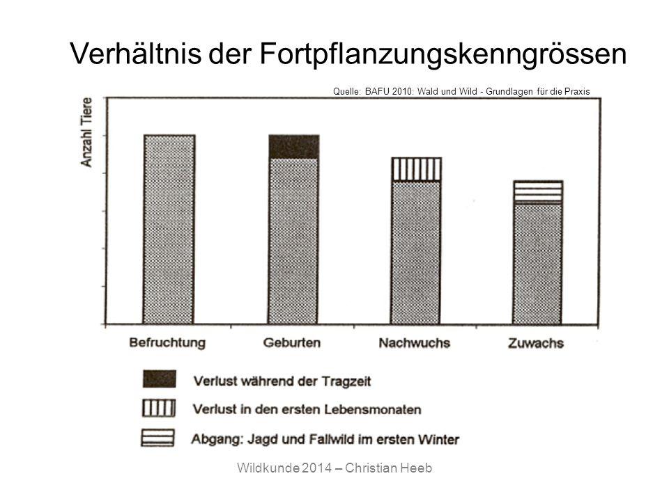 Verhältnis der Fortpflanzungskenngrössen