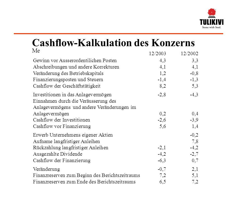 Cashflow-Kalkulation des Konzerns