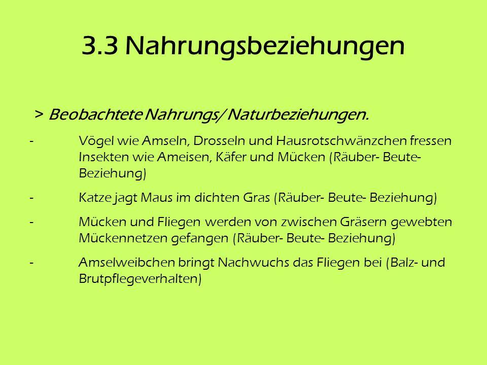 3.3 Nahrungsbeziehungen > Beobachtete Nahrungs/ Naturbeziehungen.