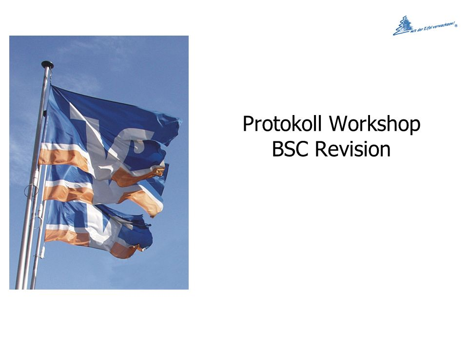Protokoll Workshop BSC Revision