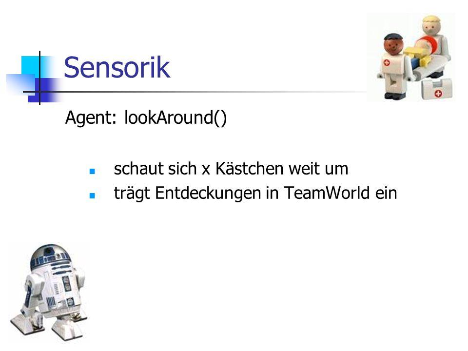 Sensorik Agent: lookAround() schaut sich x Kästchen weit um