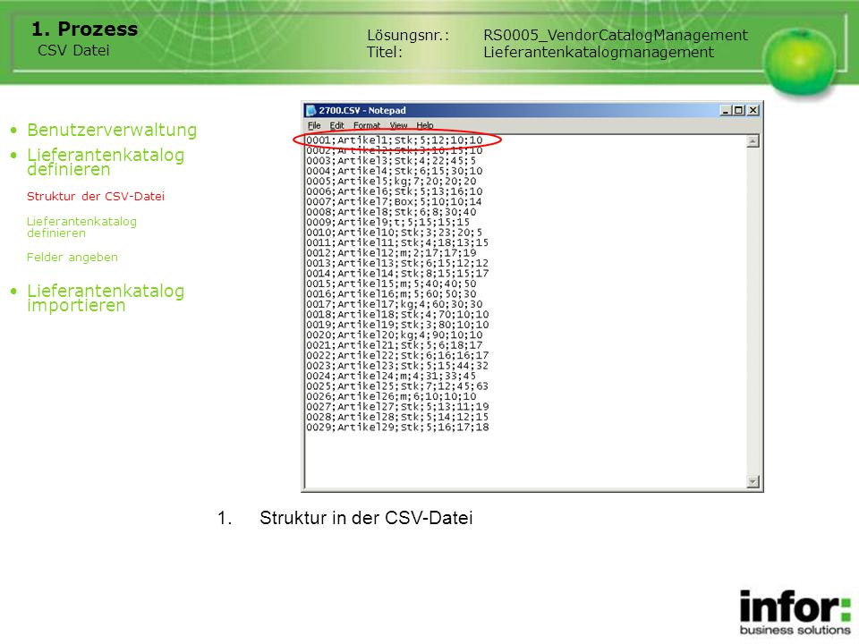 Struktur in der CSV-Datei