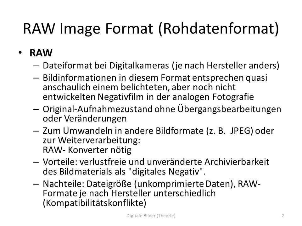 RAW Image Format (Rohdatenformat)