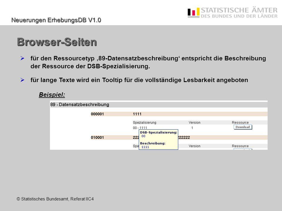 Browser-Seiten für den Ressourcetyp '89-Datensatzbeschreibung' entspricht die Beschreibung der Ressource der DSB-Spezialisierung.
