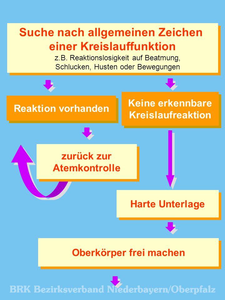 Suche nach allgemeinen Zeichen einer Kreislauffunktion