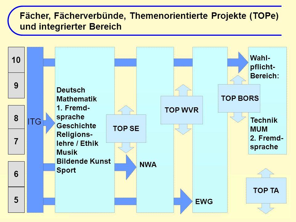 Fächer, Fächerverbünde, Themenorientierte Projekte (TOPe) und integrierter Bereich