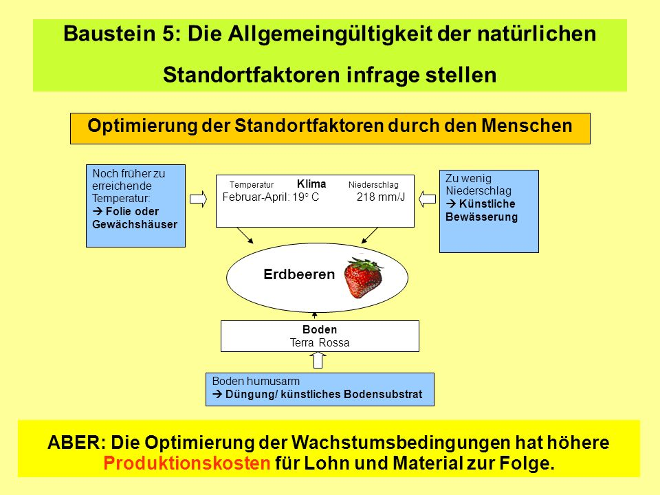 Optimierung der Standortfaktoren durch den Menschen