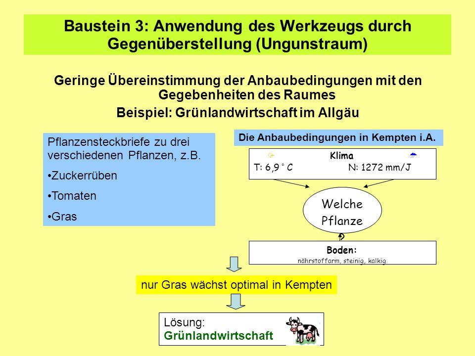Beispiel: Grünlandwirtschaft im Allgäu