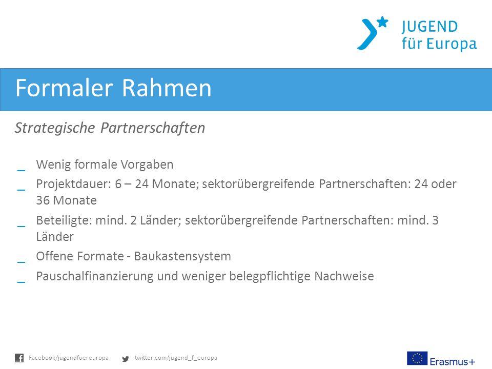 Formaler Rahmen Strategische Partnerschaften Wenig formale Vorgaben