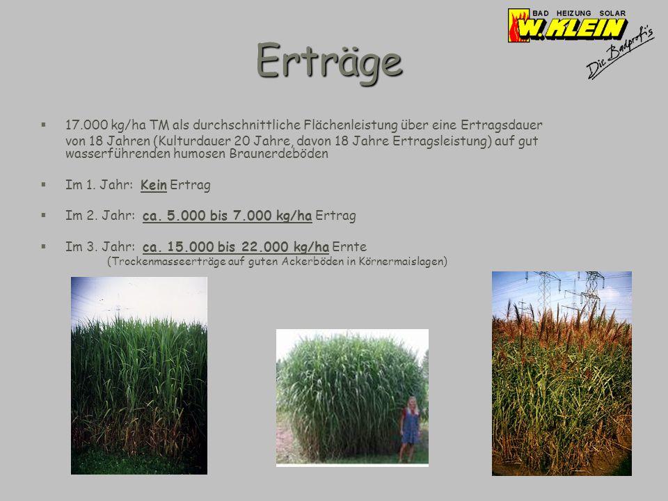 Erträge 17.000 kg/ha TM als durchschnittliche Flächenleistung über eine Ertragsdauer.