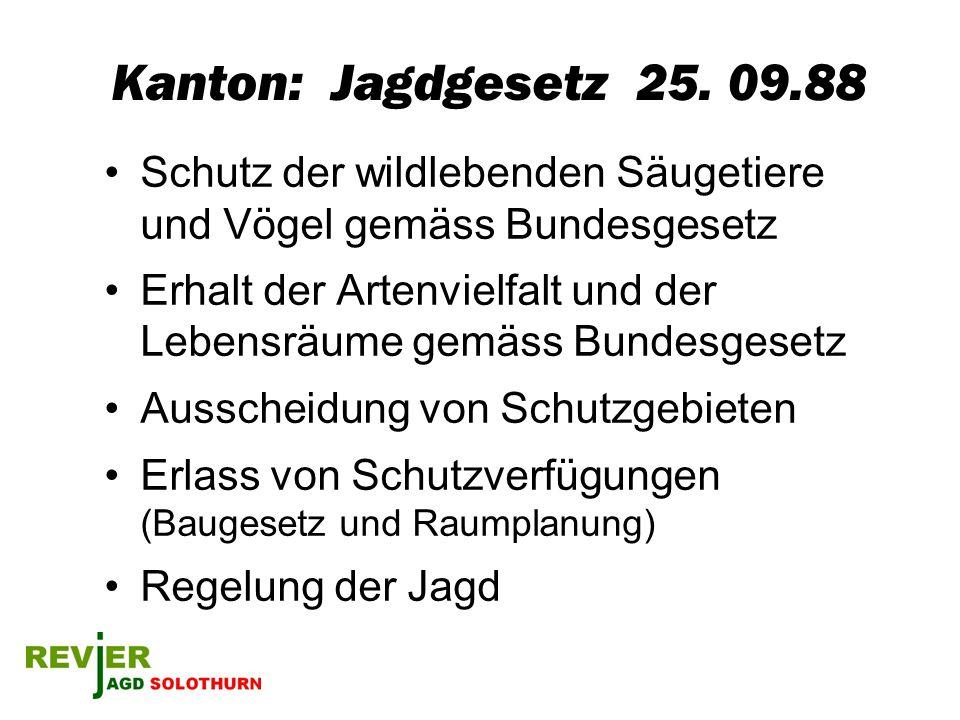 Kanton: Jagdgesetz 25. 09.88 Schutz der wildlebenden Säugetiere und Vögel gemäss Bundesgesetz.