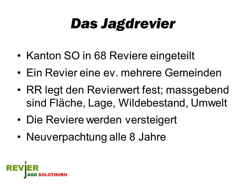 Das Jagdrevier Kanton SO in 68 Reviere eingeteilt