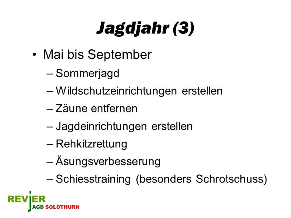 Jagdjahr (3) Mai bis September Sommerjagd