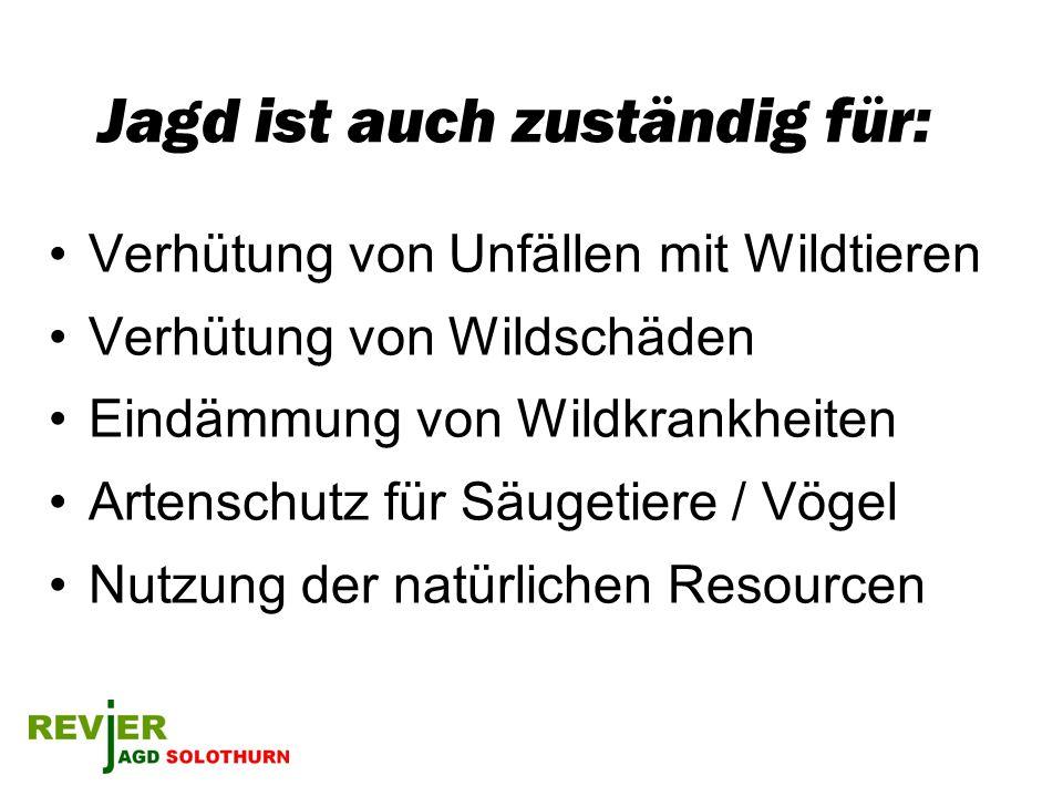 Jagd ist auch zuständig für: