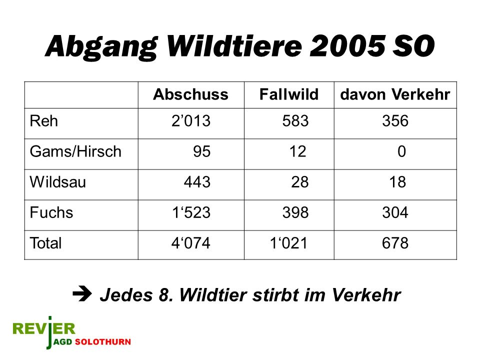 Abgang Wildtiere 2005 SO  Jedes 8. Wildtier stirbt im Verkehr