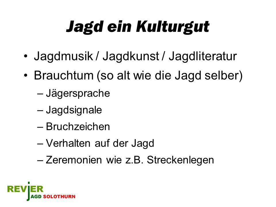 Jagd ein Kulturgut Jagdmusik / Jagdkunst / Jagdliteratur