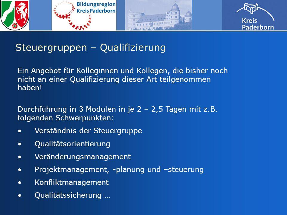 Steuergruppen – Qualifizierung