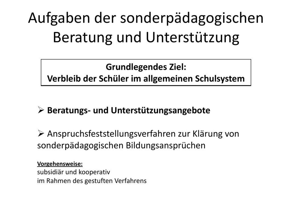 Nett Beispielzusammenfassung Für Sonderpädagogik Berater ...