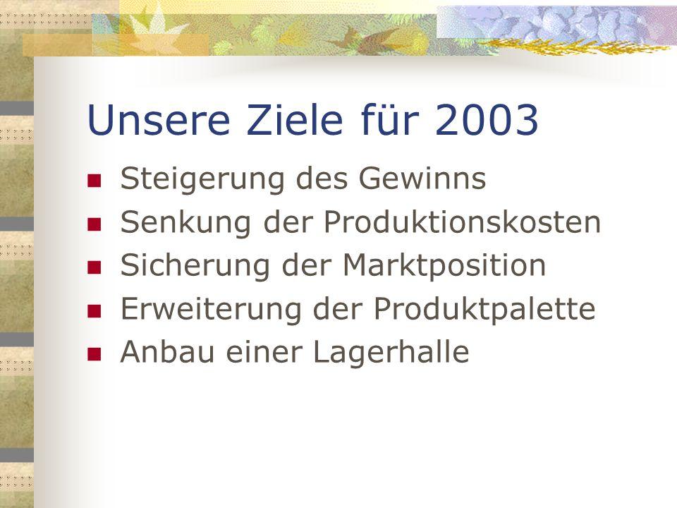 Unsere Ziele für 2003 Steigerung des Gewinns